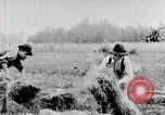 Image of American farmers United States USA, 1924, second 7 stock footage video 65675025387