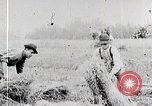 Image of American farmers United States USA, 1924, second 8 stock footage video 65675025387