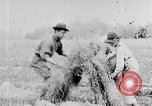 Image of American farmers United States USA, 1924, second 9 stock footage video 65675025387