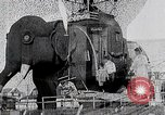 Image of giant wooden elephant with skin of hammered tin Margate New Jersey USA, 1919, second 10 stock footage video 65675025408