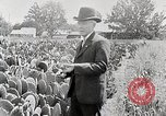 Image of Luther Burbank with cactus United States USA, 1919, second 3 stock footage video 65675025419