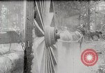 Image of Transporting cut tree logs United States USA, 1919, second 2 stock footage video 65675025423