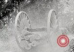 Image of Transporting cut tree logs United States USA, 1919, second 9 stock footage video 65675025423