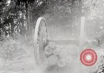 Image of Transporting cut tree logs United States USA, 1919, second 10 stock footage video 65675025423