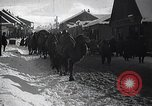 Image of Russian Army moving supplies by camel Russia, 1916, second 5 stock footage video 65675025520