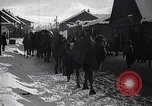 Image of Russian Army moving supplies by camel Russia, 1916, second 7 stock footage video 65675025520
