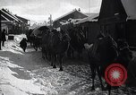 Image of Russian Army moving supplies by camel Russia, 1916, second 12 stock footage video 65675025520