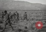 Image of U.S. Army Motor Transport Convoy of 1919 Utah United States USA, 1919, second 6 stock footage video 65675025556