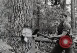 Image of logging and saw mill processing Crossville Tennessee USA, 1940, second 2 stock footage video 65675025572