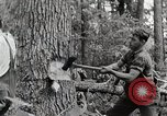 Image of logging and saw mill processing Crossville Tennessee USA, 1940, second 9 stock footage video 65675025572