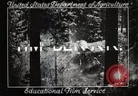 Image of Timber growing and logging California United States USA, 1931, second 8 stock footage video 65675025577