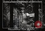 Image of Timber growing and logging California United States USA, 1931, second 9 stock footage video 65675025577