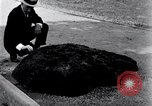 Image of Meteorite excavated in Dallas Dallas Texas USA, 1920, second 4 stock footage video 65675025654