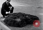 Image of Meteorite excavated in Dallas Dallas Texas USA, 1920, second 5 stock footage video 65675025654