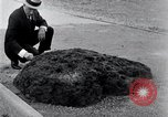 Image of Meteorite excavated in Dallas Dallas Texas USA, 1920, second 8 stock footage video 65675025654