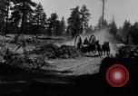 Image of large wheeled rig hauling cut logs United States USA, 1920, second 2 stock footage video 65675025658