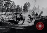 Image of large wheeled rig hauling cut logs United States USA, 1920, second 7 stock footage video 65675025658