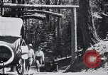 Image of Yosemite Valley California United States USA, 1920, second 3 stock footage video 65675025665