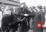 Image of Jack Dempsey New York United States USA, 1935, second 5 stock footage video 65675025714