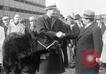 Image of Jack Dempsey New York United States USA, 1935, second 6 stock footage video 65675025714