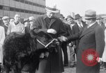 Image of Jack Dempsey New York United States USA, 1935, second 7 stock footage video 65675025714