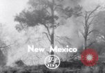 Image of forest fire New Mexico United States USA, 1951, second 1 stock footage video 65675025743