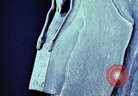 Image of ancient civilization Egypt, 1951, second 9 stock footage video 65675025782