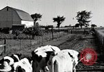 Image of farm life Michigan United States USA, 1941, second 10 stock footage video 65675025813