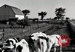 Image of farm life Michigan United States USA, 1941, second 11 stock footage video 65675025813