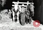 Image of farm life Michigan United States USA, 1941, second 8 stock footage video 65675025816
