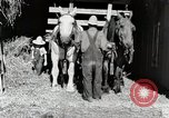 Image of farm life Michigan United States USA, 1941, second 10 stock footage video 65675025816