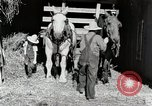 Image of farm life Michigan United States USA, 1941, second 11 stock footage video 65675025816