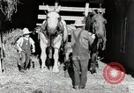 Image of farm life Michigan United States USA, 1941, second 12 stock footage video 65675025816