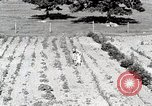 Image of farm life Michigan United States USA, 1941, second 10 stock footage video 65675025817