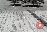 Image of farm life Michigan United States USA, 1941, second 11 stock footage video 65675025817