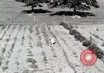 Image of farm life Michigan United States USA, 1941, second 12 stock footage video 65675025817