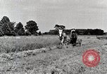 Image of farm life Michigan United States USA, 1941, second 9 stock footage video 65675025818