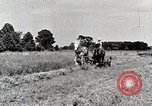 Image of farm life Michigan United States USA, 1941, second 11 stock footage video 65675025818