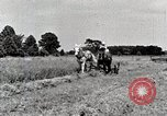 Image of farm life Michigan United States USA, 1941, second 12 stock footage video 65675025818
