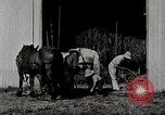Image of farm life Michigan United States USA, 1941, second 7 stock footage video 65675025820