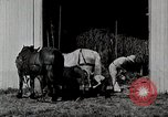 Image of farm life Michigan United States USA, 1941, second 9 stock footage video 65675025820