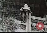 Image of farm life Michigan United States USA, 1941, second 11 stock footage video 65675025821