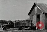 Image of farm life Michigan United States USA, 1941, second 3 stock footage video 65675025825