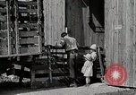Image of farm life Michigan United States USA, 1941, second 8 stock footage video 65675025825