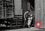Image of farm life Michigan United States USA, 1941, second 12 stock footage video 65675025825