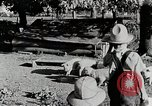 Image of farm life Michigan United States USA, 1941, second 11 stock footage video 65675025826