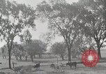 Image of farm life Michigan United States USA, 1941, second 8 stock footage video 65675025828