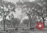Image of farm life Michigan United States USA, 1941, second 10 stock footage video 65675025828