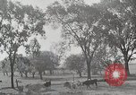 Image of farm life Michigan United States USA, 1941, second 11 stock footage video 65675025828
