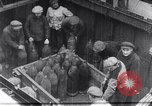 Image of haul bombs Germany, 1917, second 4 stock footage video 65675025844